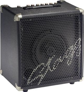 30W RMS, 2-channel combo for Electric Double Bass (ST-ADBA40 USA)