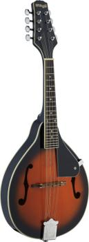 Bluegrass Mandolin with solid Spruce top (ST-M20 S)