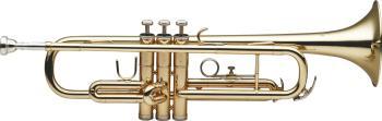 Bb Trumpet, w/ABS case (ST-WS-TR215)
