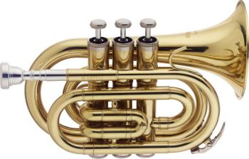 Bb Pocket Trumpet, w/ABS case (ST-WS-TR245)