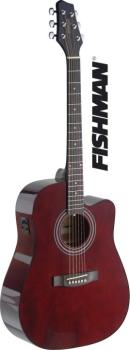 Dreadnought electro-acoustic cutaway concert guitar with FISHMAN pream (ST-SA40DCFI-TR)