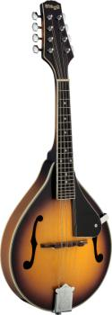 Bluegrass Mandolin with solid spruce top (ST-M40 S)